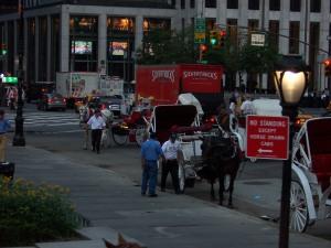 Las Carrozas de caballos en Nueva York